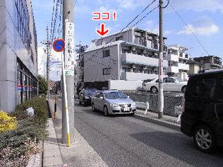 rize7.jpg