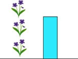 グラフ2種.jpg