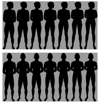 脚の長さの絵.jpg